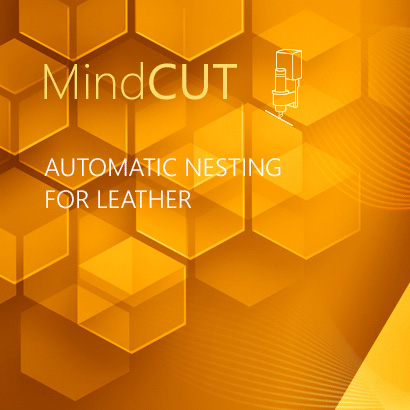 Automatic Nesting for Leather