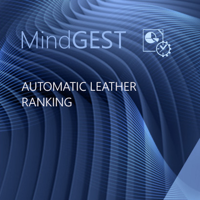 Automatic Leather Ranking